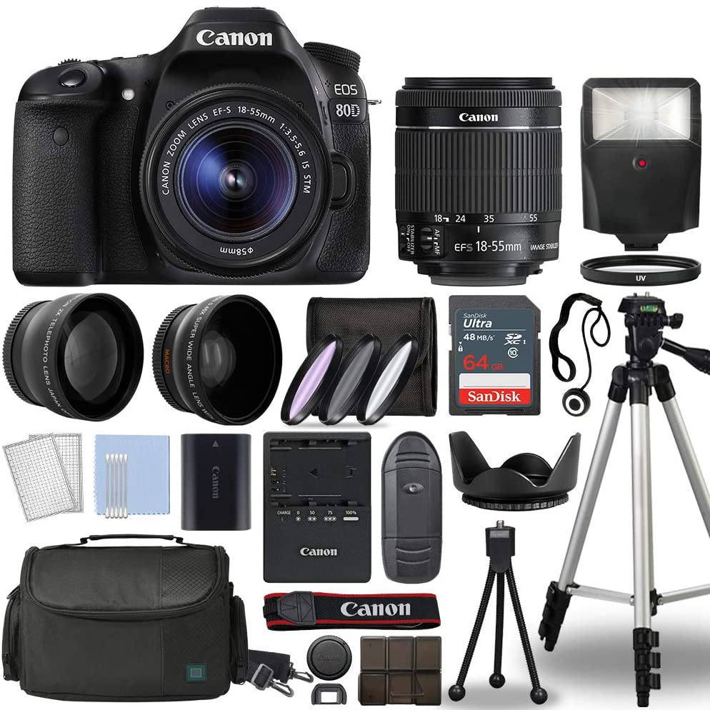 canon 80d - What is the best camera for a budding photographer - parameters and devices